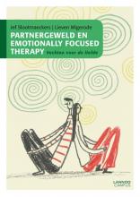 Lieven Migerode Jef Slootmaeckers, Partnergeweld en Emotionally Focused Therapy