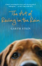 Stein, Garth Art of Racing in the Rain