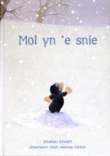 Jonathan  Emmett Mol yn `e snie