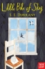 S. Durrant, Little Bits of Sky