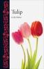 Fischer Celia, ,Tulip