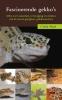 Cindy Hoek, Fascinerende gekko's