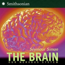 Simon, Seymour The Brain