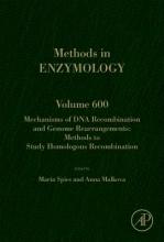 Mechanisms of DNA Recombination and Genome Rearrangements: Methods to Study Homologous Recombination