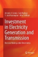 Conejo, Antonio J. Investment in Electricity Generation and Transmission
