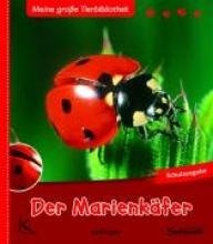 Tracqui, Valérie Der Marienkäfer