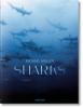 <b>Michael Muller, Philippe Cousteau, Dr. Alison Kock, Arty Nelson</b>,Michael Muller. Sharks