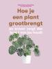 Erin  Harding Morgan  Doane,Hoe je een plant grootbrengt