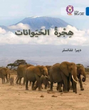 Deborah Chancellor Animal Migration