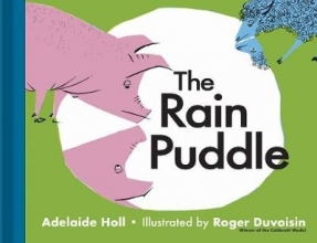 Holl, Adelaide Rain Puddle