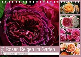 Cross, Martina Rosen Reigen im Garten (Tischkalender 2019 DIN A5 quer)