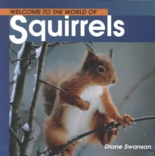 Swanson, Diane Welcome to the World of Squirrels