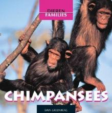 Dan Greenberg Chimpansees