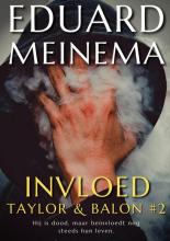 Eduard Meinema , Invloed