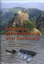 Pieter Augustinus Theo Wong  Salomon Kroonenberg, Geologie en landschap van Suriname