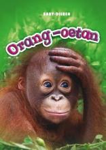 Christina  Leaf Baby-dieren Orang-oetan