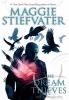 Stiefvater, Maggie,The Dream Thieves
