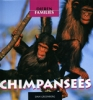 Dan Greenberg,Chimpansees
