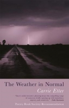 Carrie Etter The Weather in Normal