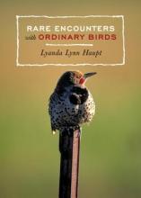 Haupt, Lyanda Lynn Rare Encounters with Ordinary Birds
