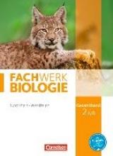 Hampl, Udo,   Oberschelp, Katrin,   Pohlmann, Anke,   Pondorf, Peter Fachwerk Biologie Gesamtband 2A/B. Schülerbuch Nordrhein-Westfalen