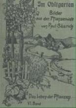 Säurich, Paul Im Obstgarten