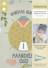Gemma  Broekhuis Milestone Turn Wheel Photo Card: Baby`s first year (nederlandstalig)