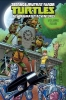 Walker, Landry,   Manning, Matthew K.,Teenage Mutant Ninja Turtles New Animated Adventures 4