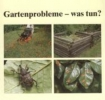 Schumann, Eva,Gartenprobleme - was tun?