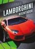<b>Calvin  Cruz</b>,Lamborghini Aventador, Gek op auto`s!