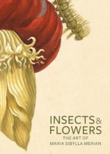 David,Brafman Insects and Flowers