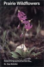 Strickler, Dee Prairie Wildflowers
