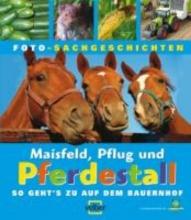 Maisfeld, Pflug und Pferdestall