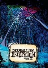Jeroen Besseling De qualia en het spectrum