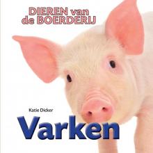 Katie  Dicker Varken