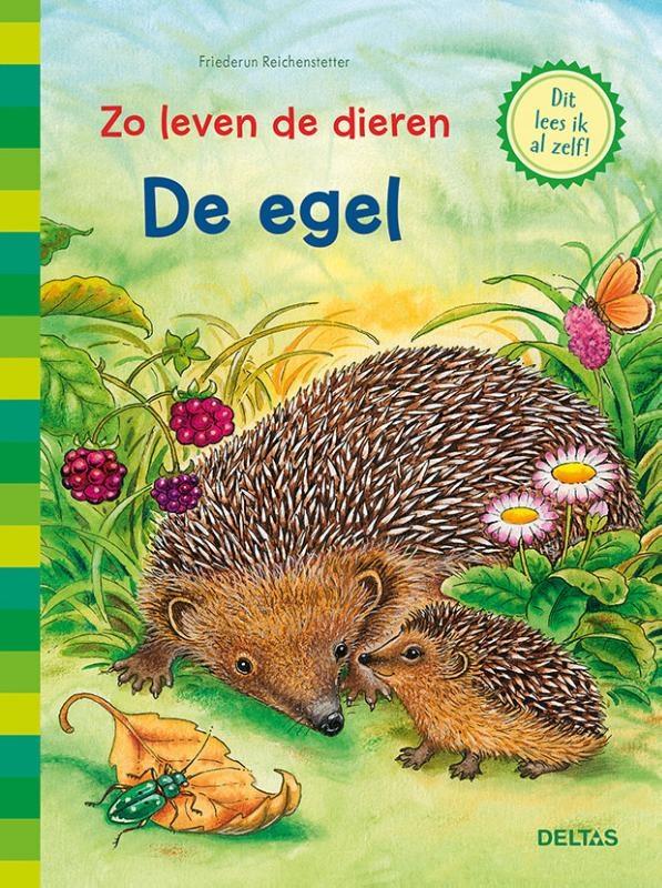 Friederun Reichenstetter,De egel
