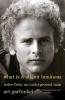 Garfunkel Art,What is It All but Luminous