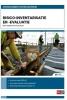 <b>Wim van Alphen</b>,Risico-inventarisatie en -evaluatie
