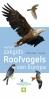 <b>Peter  Hayman, Rob  Hume</b>,Haymans zakgids Roofvogels van Europa