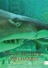 Sylvia de Rijk,Waar bloed is, zijn haaien