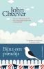 John  Cheever,O hoe paradijselijk