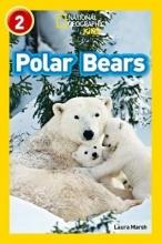 Laura Marsh Polar Bears