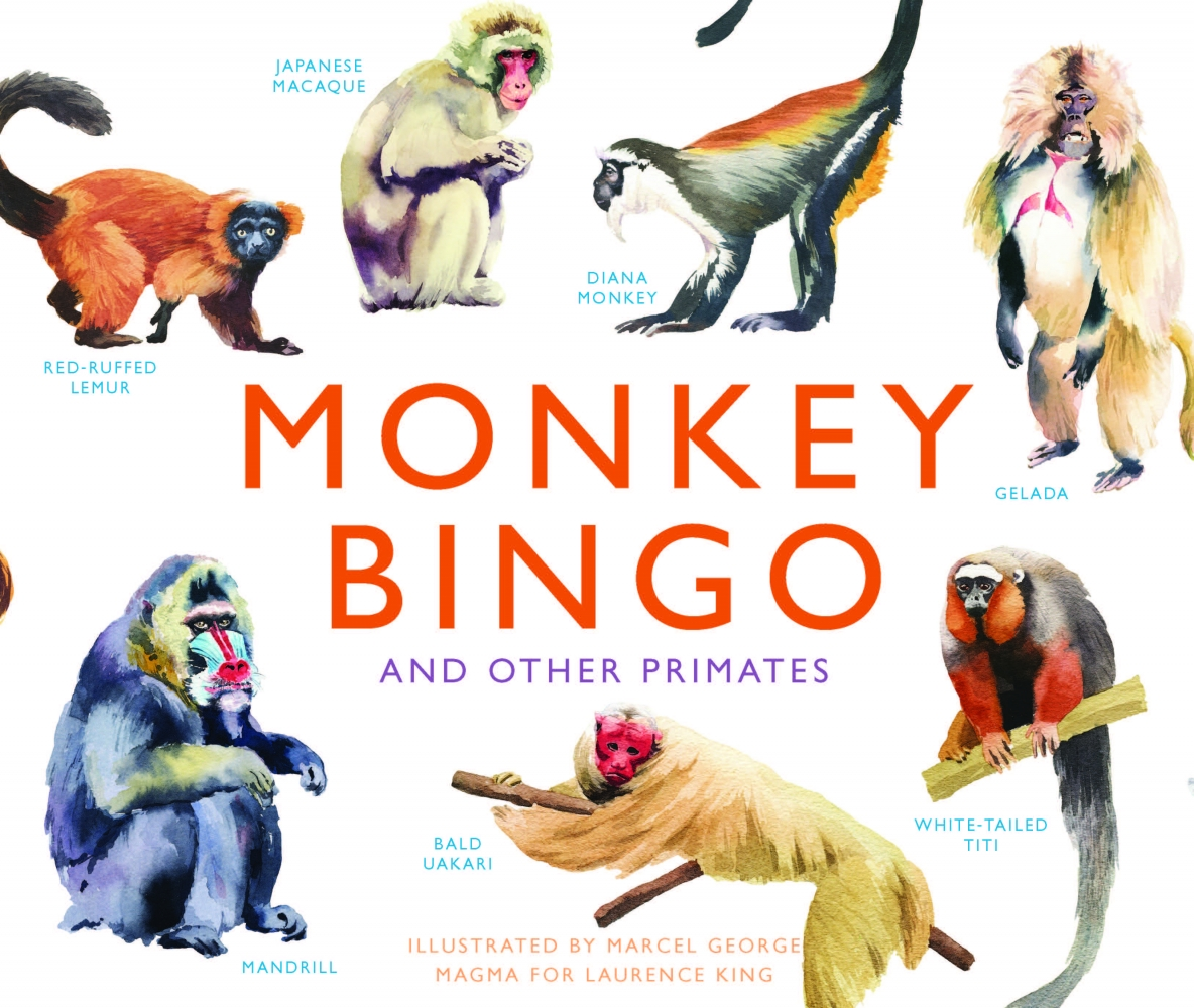 George, Marcel,Monkey Bingo