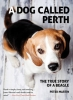 Martin, Peter, A Dog Called Perth